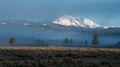 Shrouded (dbushue) Tags: morning trees mountains nature fog sunrise landscape early nikon valley yellowstonenationalpark wyoming ynp snowcovered coth supershot 2013 swanlakeflats absolutelystunningscapes damniwishidtakenthat dailynaturetnc13
