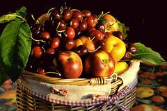 Frutta nel cesto (Melisenda2010) Tags: stilllife flora estate naturamorta coth coth5