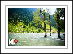 Kaghan (Khalid Akhtar) Tags: new blue trees winter pakistan light sunset summer sky food mountain tree green art nature water beauty weather sunrise river way happy photography early dangerous nikon meetup lakes earlymorning naturallight fresh christian traveller commercial pro pakistani wallpapers kap punjab kaghan khalid ecards verse pak akhtar naran d4 onelight abbottabad yps commercialphotography learnphotography eidwishes khalidakhtar khalidsphotography ypsmeetup d4photography ypsphotography d4karachi d4pictures kaghanriver naranriver naranbridge