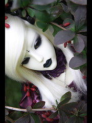 Misterija_03 (Ekaterina_Dreamer) Tags: red white black male nature md berry god violet lips master sd sacred bjd horn soom sg 2008 fer barberry vow heliot nephelin nogisan4ik
