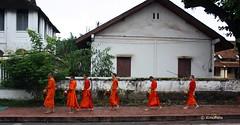 IMG_8123 (XimoPons : vistas 5.500.000 views) Tags: asia laos lao buda mekong luangprabang indochina budismo monges patrimoniodelahumanidad ximopons buismo