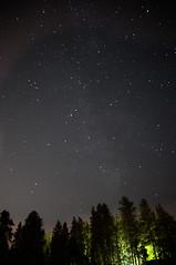 (Wajeeha Siddiqui) Tags: trees green gardens night way stars edmonton space botanic universe milky devonian