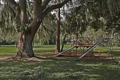 Old School Playground (kellymariemckay) Tags: metal oak play florida live ground slide equipment jungle sarasota gym mossy myakka