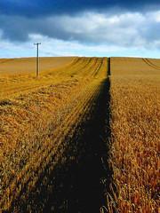 Telegraph Road (Blarney Pilgrim1) Tags: landscape scotland scottishlandscape