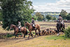 Four Shires Bloodhound Hunt (Raven Photography by Jenna Goodwin) Tags: england horses horse jenna english dogs water drag four photography jump hunting pony ponies raven staffordshire bloodhound hunt hounds goodwin shires jumpiong ravenphotography