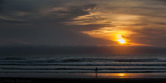 Sunset on surf (Mike Brebner) Tags: ocean sea newzealand seascape west beach water sport coast spring sand nikon october surf weekend surfer south surfing auckland coastal nz leisure nikkor tasman piha 2013 cmikebrebner