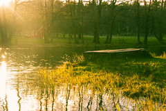 Afternoon Outside (Ludvius) Tags: sunset nature water outside ludovicophotography wwwludovicophotocom