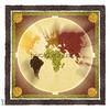 my personal seeds mandala (paolo zanasco) Tags: coffee barley pumpkin beans corn rice map mandala seeds mais worldmap mappa zucca orzo azuki paolozanasco