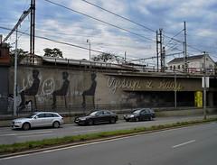 Step out of Line! (Kojotisko) Tags: graffiti grafitti streetphotography brno creativecommons czechrepublic streetphoto sonycybershotdscp100