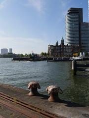 Rotterdam092