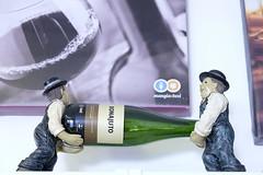 _DSF6624 (moris puccio) Tags: roma fuji vino vini enoteca piazzabologna spumanti liquori xt1 mangiaebevi