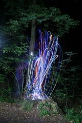 IMG_5743 (raimund.stolle) Tags: lightpainting licht nacht led wald dunkel oldenburg langzeitbelichtung leuchtschnur