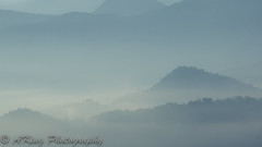 4T4A0622.jpg (林阿King) Tags: mist mountain sunrise landscape dawn scenery ray ngc taiwan 南投 台灣 nantou 雲海 魚池鄉 金龍山 金龍曙光 中五城 金龍日出