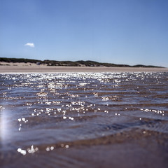 Let's swim (Wouter de Bruijn) Tags: hasselblad 500cm zeiss planar 80mm kodak ektar kodakektar kodakektar100 ektar100 film filmphotography filmisnotdead analog analogphotography mediumformat mediumformatfilm 6x6 squareformat square 120 120film beach water sea swim coast waterfront dunes nature outdoor holland oostkapelle depthoffield