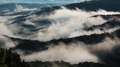 Morning Mist (David J Price) Tags: red mist dawn maleny