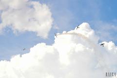 Musal(36) (RAICA Fotografia) Tags: voar musal rj fumaa esquadrilha ceu caracal