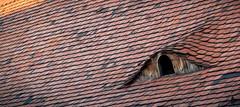 25_B&P (Christian Cardenal) Tags: canon rebelt1i 500d street budapest window roof