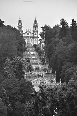 Lamego - Seicento *Explore* (Celeste Messina) Tags: biancoenero bn bw blackandwhite scalinata flightofsteps steps scale lamego portogallo portugal barocco pellegrinaggio pilgrimage azulejos rococ