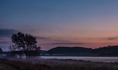 Foggy Meadow (astielau) Tags: damp nebel sonnenuntergang wetter