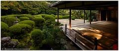 Early morning in Shisen-do temple, Kyoto, Japan (Damien Douxchamps) Tags: japan  japon kansai  kinki  kyoto   northernsakyo temple     shisendo shisendou jozanji jouzanji