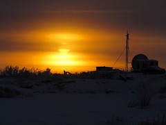 IMG_9403_1 (savillent) Tags: tuktoyaktuk nwt northwest territories canada sun sky silhouette snow winter north arctic dark daylight landscape photography yellow glow cold isolated barren world savillent november 2016
