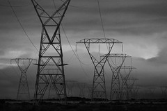 Noir: Pylons Desert Roard State Highway 1 Waiouru New Zealand (eriagn) Tags: noir pylons structure architectural metal wires energy electricity landscape manmade engineering electrical cable powerlines noirfilter filter photography marching staunch powerful harsh environment habitat rainshadow blizzards flora survival lrock pumice gravel pylon scree cloud newzealand northisland rangipo rangipodesert tongarironationalpark windswept spring rugged statehighway1 nativeshrubs ancienttree roots exposed overcast cloudy spectacular cold eriagn ngairehart roadtrip tussock ecosystem fragile geology hills tree gnarly rangipogravelfield tukinoskifield unescoworldheritage tapestry textures