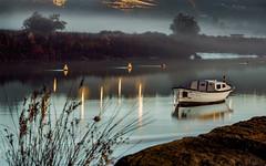 By the river (Explored) (Eduardo Regueiro) Tags: boat bote spain espaa betanzos galicia relax tranquilidad sunrise fog niebla sun sol barca