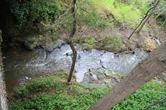 Spring Creek flowing fast Hepburn Mineral Springs Reserve_9534 (gervo1865_2 - LJ Gervasoni) Tags: hepburn springs swiss italian festa 2016 victoria australia history heritage culture celebration tradition mineral reserve