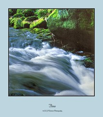 Flow (M.J.Woerner) Tags: nature forest forestry outdoor wood badenbaden blackforest stream torrent river flow moss