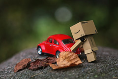 Danbo loves red (eleni m (busy remodeling house and garden)) Tags: danbo beetle vw dollzzz red autumn leaves outdoor dof bokeh cobblestone kei