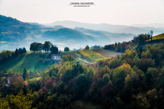 The colors of Langhe