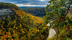 Lazy River (Paul Bryd) Tags: landscape nature state water letchworth park gorge geneseeriver falls