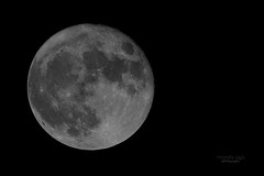Supermoon (mariola aga) Tags: frostymoon beavermoon supermoon fullmoon moon november142016 2016 chicago blackandwhite bw night sky thegalaxy