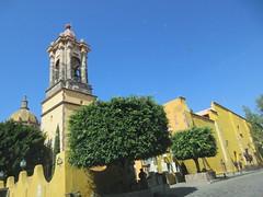 Trees at Templo de la Inmaculata Concepcin, San Miguel de Allende, Mexico (Paul McClure DC) Tags: sanmigueldeallende mexico bajo guanajuato nov2016 historic architecture church