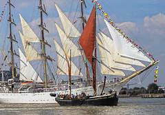 Tall Ships London 2014 (pg tips2) Tags: tall ships tallships thames river sailingonthetide flags