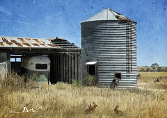 Old Farm Barn and Silo (Tartan Ranga) Tags: old outback barn farm silo australian australia texture hot
