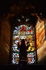 St Giles Thistle Chapel window (L. Charnes) Tags: edinburgh royalmile stgiles cathedral window stainedglass orderofthethistle