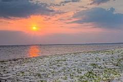 Destin Sunset (Ellen Yeates) Tags: ocean trip sunset vacation sky usa sun reflection beach water photography ellen sand florida flare destin fla hdr sunflare yeates ellenyeates ellenyeatesphotography
