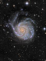 M101: The Pinwheel Galaxy and supernova SN 2011fe (Oleg Bryzgalov) Tags: astronomy deepspace astrophoto m101 nspp Astrometrydotnet:status=solved Astrometrydotnet:version=14400 sn2011fe competition:astrophoto=2012 Astrometrydotnet:id=alpha20120585537144