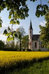 White church in yellow field framed view (Michael Tracy's photos) Tags: poland nyas
