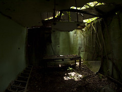 Haunted Seismograph station1 (timishue) Tags: hawaii lyon olympus fisheye honolulu aboretum evolt rokinon e410