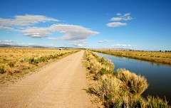 Carson Lake Wetlands (Nevada Magazine) Tags: road birds spring birding may dirtroad birders fallon 2013 birdfestival springwings carsonlakewetlands