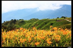 nEO_IMG_IMG_0734 (c0466art) Tags: trip travel flowers blue light red summer sky white mountain color beautiful yellow clouds canon landscape amazing scenery view many hill taiwan visit tourist east 5d 2012  c0466art