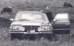 1970s-80s