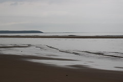 Reighton Sands (Tracy.Wilson) Tags: sea beach sands 600d reightonsands reighton canon600d