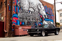 Mustang (Crystal_rivera) Tags: classic ford mustang 1965 stang classicmustang classiccoupe