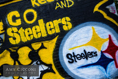 Go Steelers Graffiti (amycicconi) Tags: house graffiti football painted nfl pump steelers pumphouse gosteelers steelerfan steelerlogo