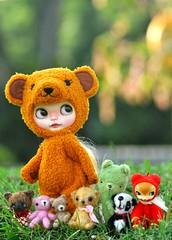 "The ""Bear"" Clan...*Mango Pudding**"