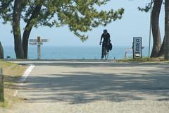 DS7_8095.jpg (d3_plus) Tags: street sea sky beach nature japan walking spring nikon scenery bokeh outdoor fine daily telephoto  tele streetphoto toyama nikkor gw      dailyphoto  takaoka thesedays 80200mm 80200 hokuriku   fineday      8020028 80200mmf28d   80200mmf28    80200mmf28af amaharashi  d700   nikond700  nikonfxshowcase aiafzoomnikkor80200mmf28sed