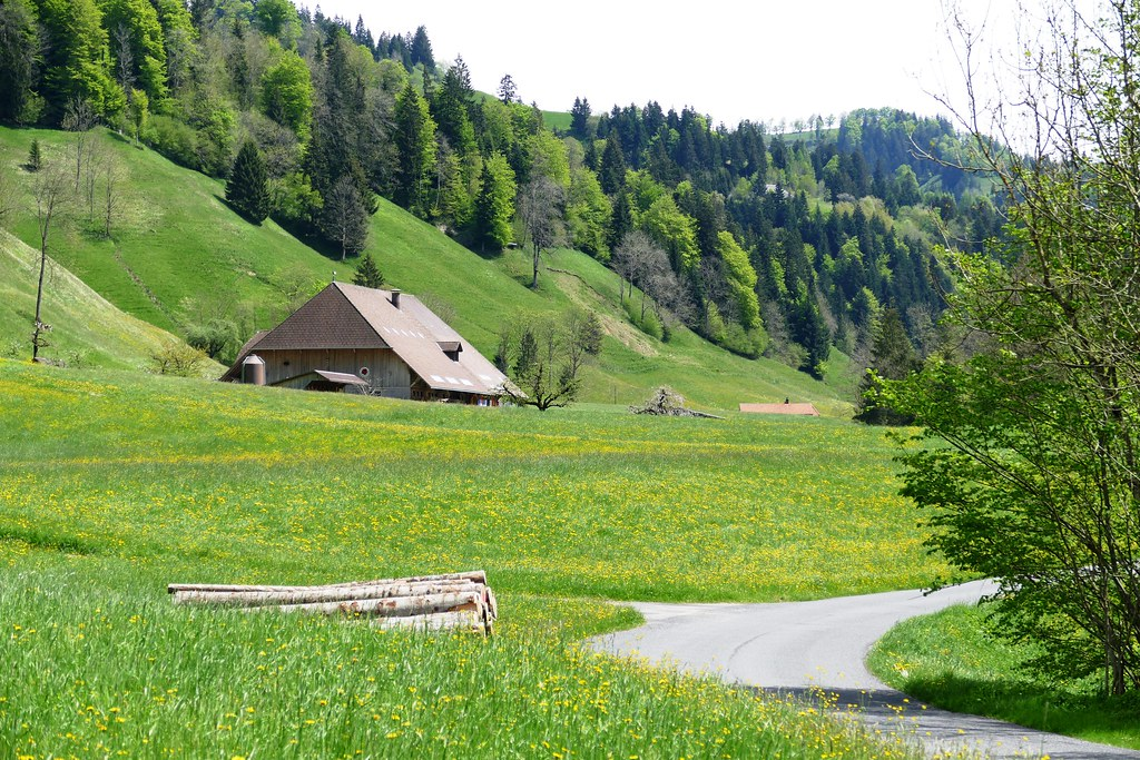 the world 39 s best photos of hornbach and switzerland